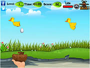 play Falling Eggs & Chick…