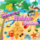 summerhiddennumbers